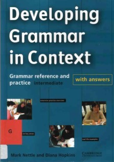 Developing Grammar In Context